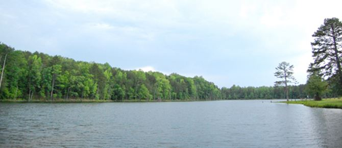 Lake Edwin Johnson surrounded by trees